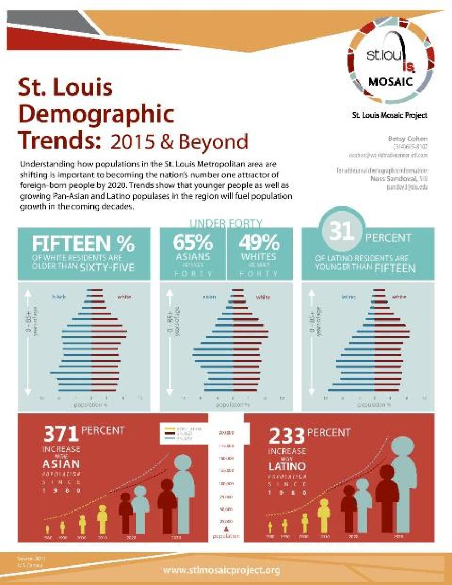 St. Louis Mosaic Project infographic