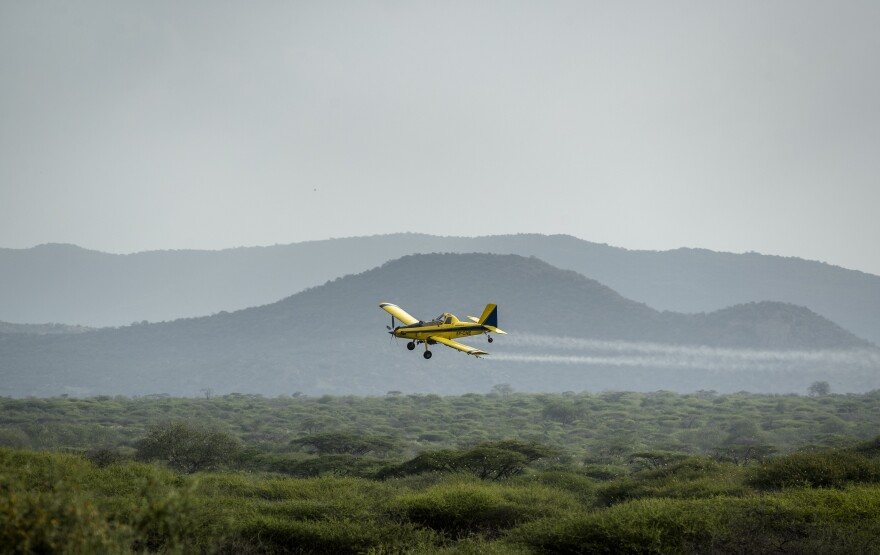 As locusts descend by the billions on parts of Kenya in the worst outbreak in 70 years, small planes are flying over infested areas and spraying pesticides — which experts say is the only effective control.