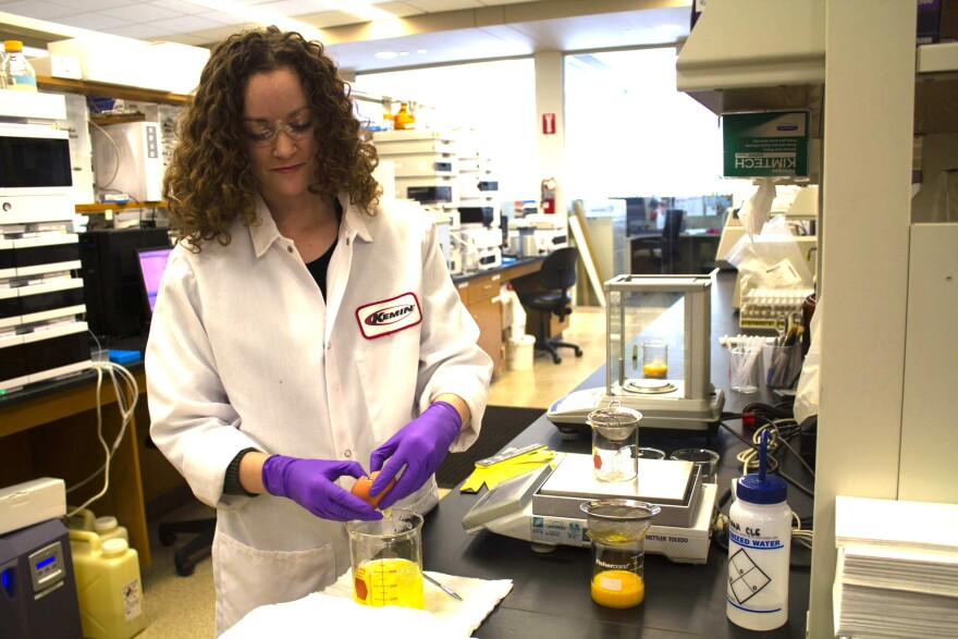 Elsie Rankin, a chemist at Kemin Industries in Des Moines, evaluates egg characteristics. The company is working on a product that could reduce the risk of African swine fever coming into the U.S. via contaminated feed.