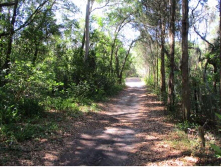 Pathway on Gladys Douglas Preserve