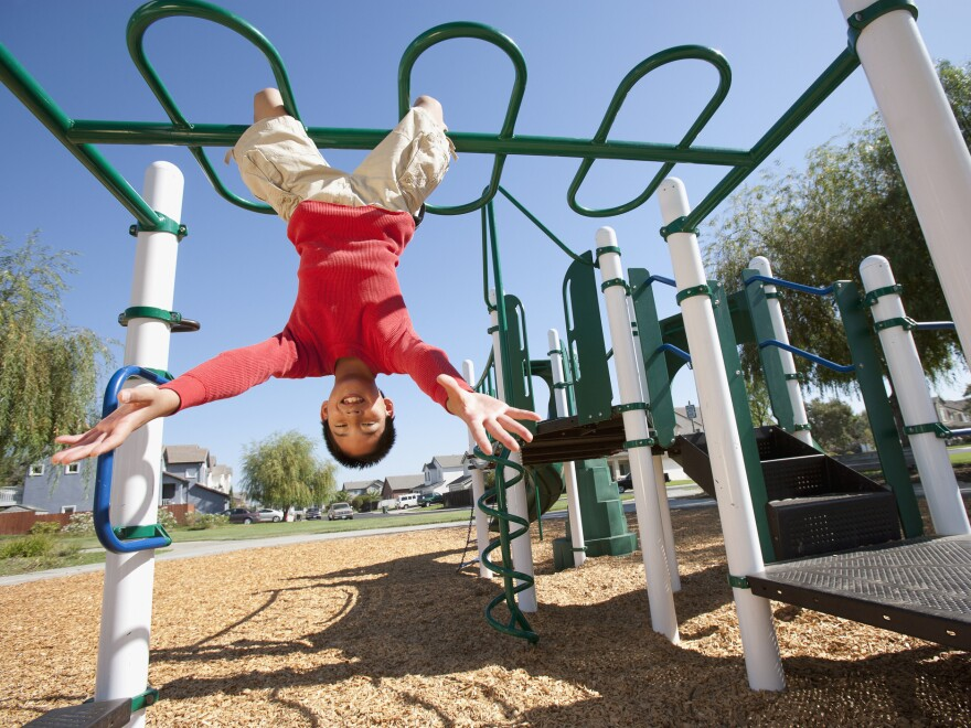 Barbara J. King considers risk on playgrounds from an evolutionary perspective.