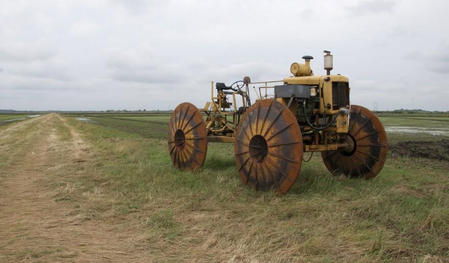 daizig_rice_farmer_tractor_agriculture.jpg