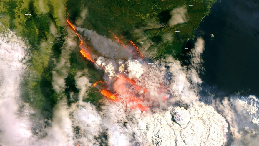 """A satellite image captured Tuesday reveals the extent of some of Australia's largest bushfires. The Bureau of Meteorology is predicting """"severe to extreme"""" fire dangers on Saturday."""