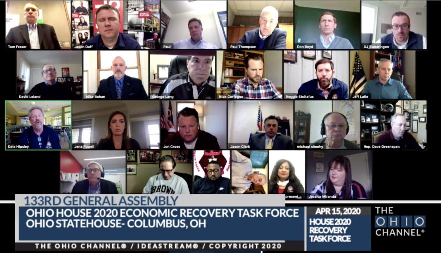 Screenshot of task force meeting