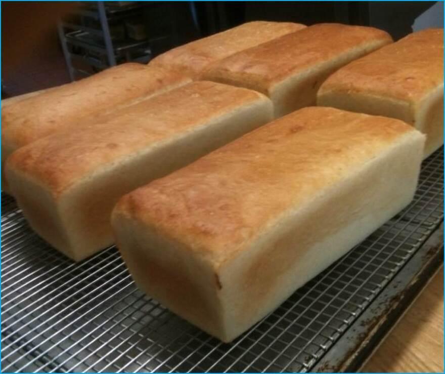 Salt_Rising_Bread.jpg