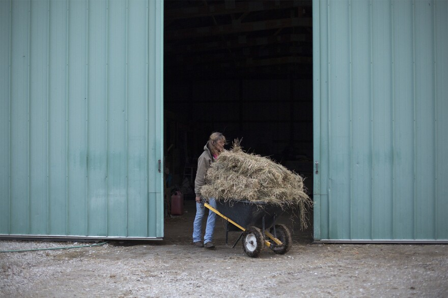 Kathy Lewis gets ready to feed the mustangs at her Madison County horse sanctuary.