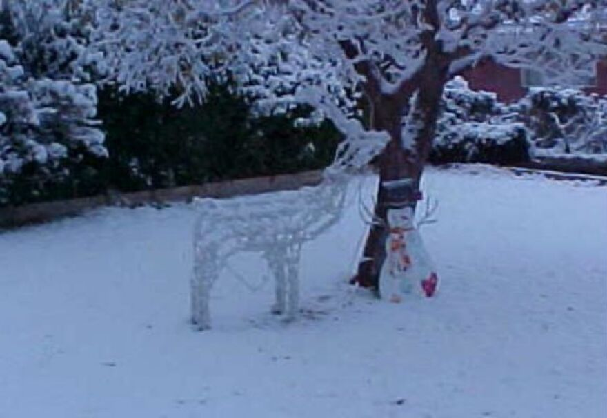 snow_in_el_paso_by_garland_cannon_for_web.jpg