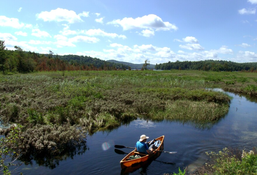 Author and activist Bill McKibben paddles toward Follensby Pond in New York's Adirondack Mountains, along the route followed by Ralph Waldo Emerson in the summer of 1858.