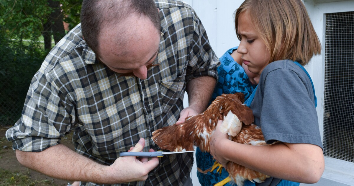 For some schoolkids, lesson plans include arithmetic, art and now agriculture