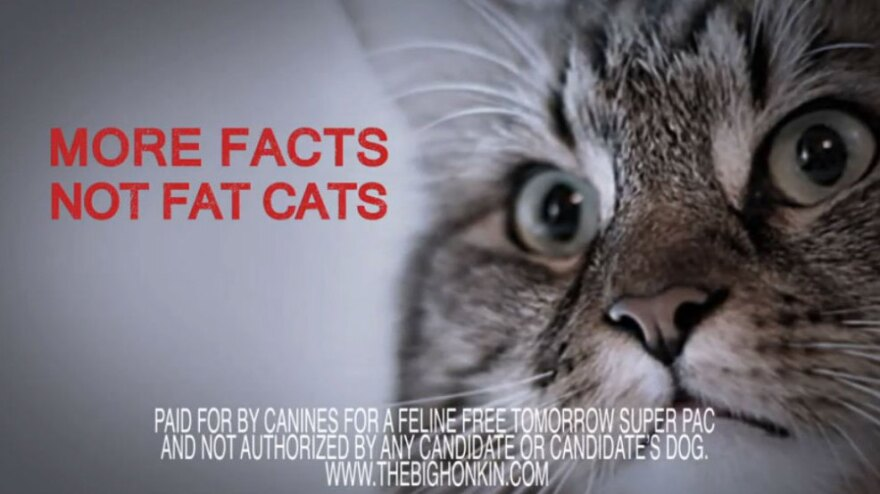 Not even pets can hide from the political caterwauling; a superPAC has attacked the candidacy of Hank the Cat.