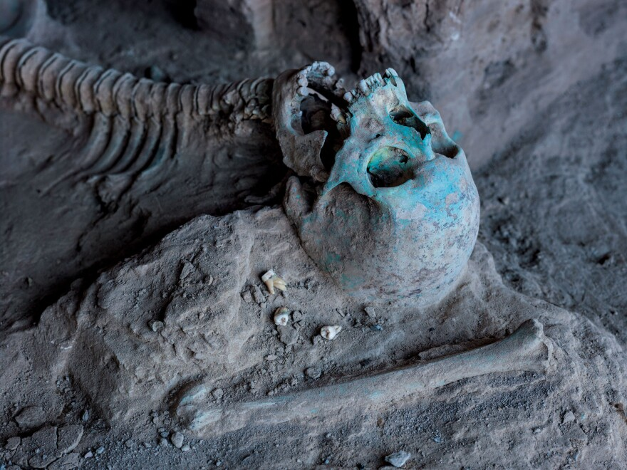 The ground at Mes Aynak is so rich in copper that rock and bones — like this skeleton found lying near a Buddhist shrine — are stained greenish-blue.
