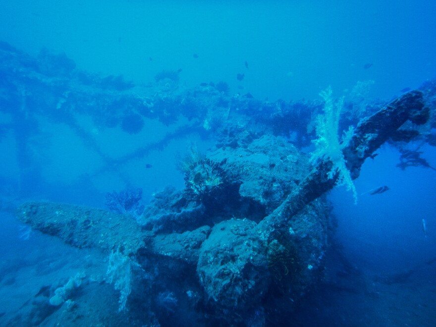 A Mitsubishi F1M outfitted for water landings was used by Japanese forces. Theories about what happened to this biplane vary. Some experts claim that it ran out of fuel and the crew swam to shore. Lloyd Woo's research suggests it was hit by Allied bombs and sank where it was moored.