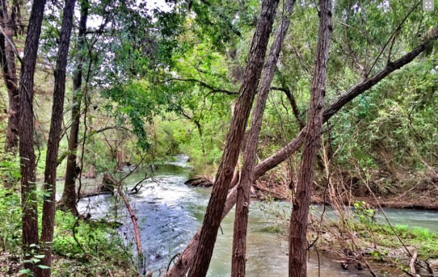 medina_river_cosa_parks.jpg