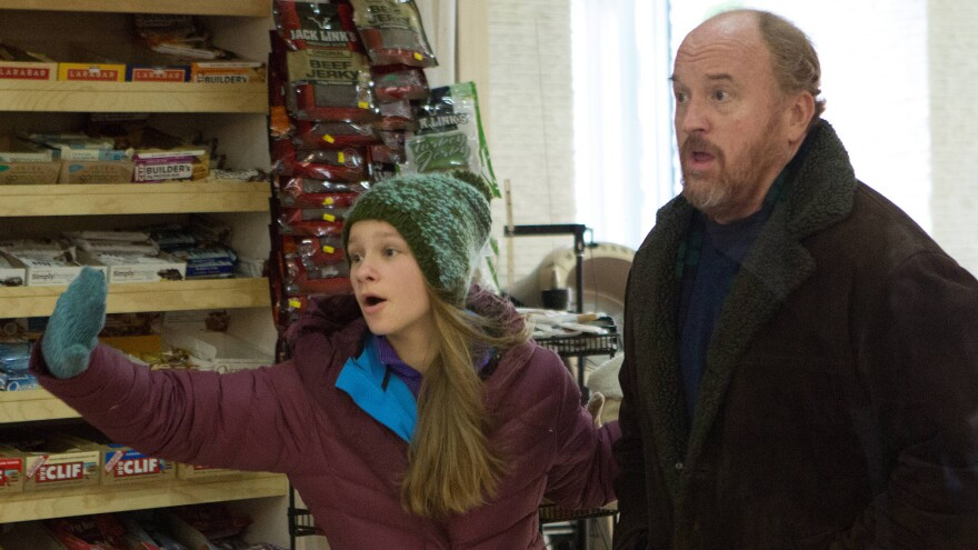 <strong></strong>Louis C.K. plays the divorced father to Lilly (Hadley Delany) in the FX series <em>Louie</em>. The comic is also a divorced father to two girls.