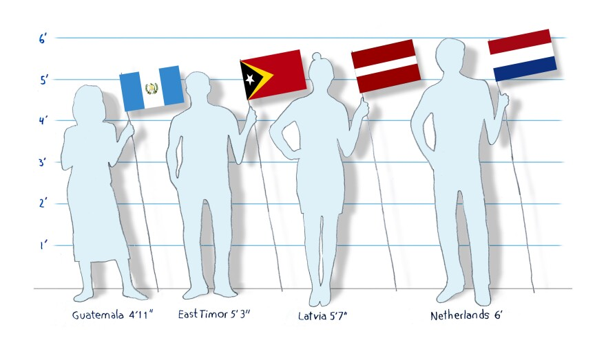 The countries with the tallest and shortest 18-year-old men and women in the world, according to a new study<em></em>.