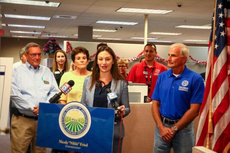 Nikki Fried speaking at a podium