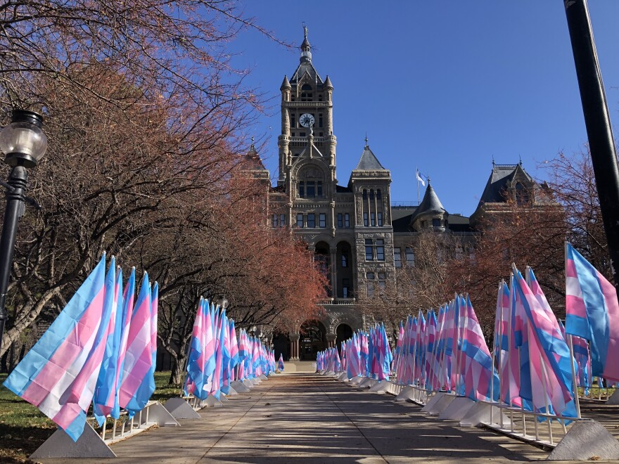 A photo of a pathway lined with Trans flags on both sides.