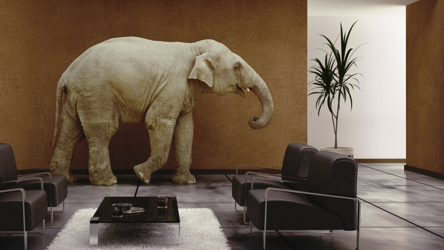 """The """"elephant in the room"""" is something obvious that can't be overlooked, even if no one is talking about it. The phrase was in use as early as 1935."""