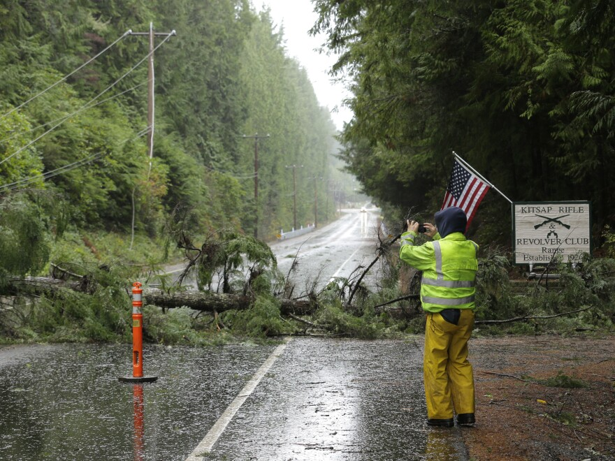 A worker photographs a tree that fell on power and fiberoptic lines and blocked a highway in Washington state on Tuesday.
