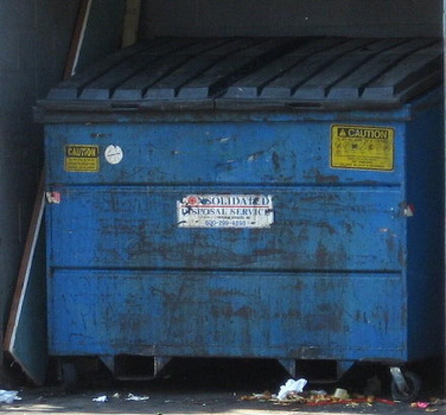 dumpsterwikimedia.jpg
