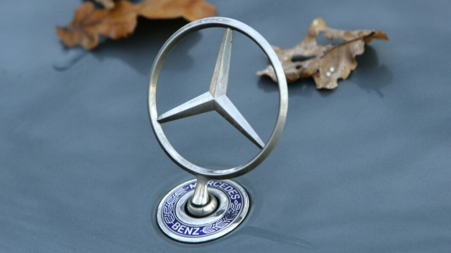 Foliage is seen on the engine hood of a Mercedes Benz.