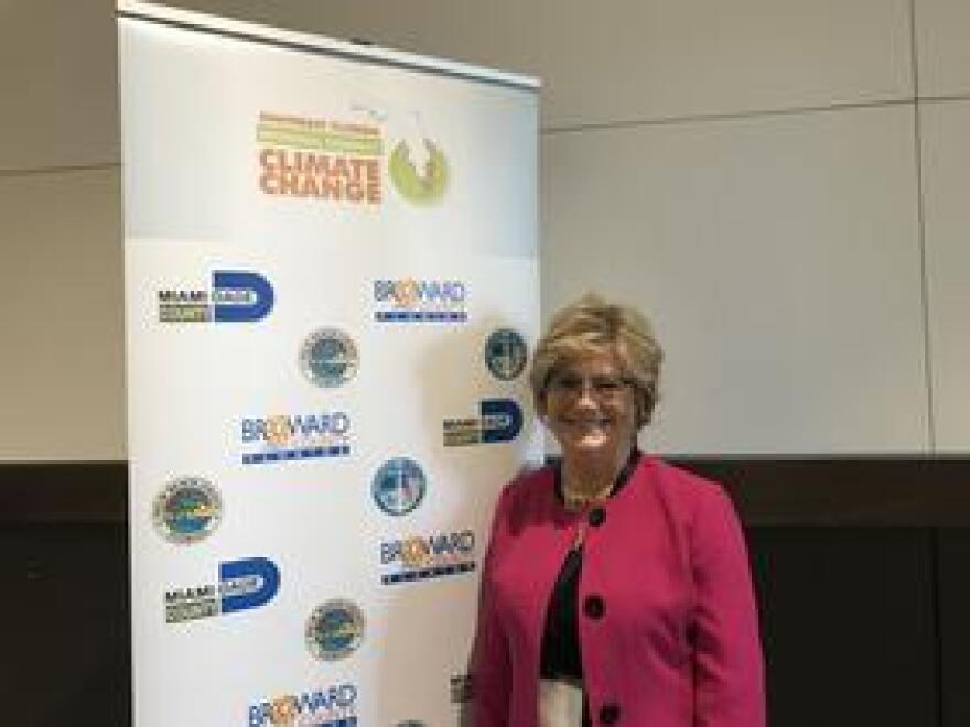Pinellas County Commissioner Janet Long led the creation of a resiliency coalition among cities, counties and businesses in the Tampa Bay region. The effort launched in early October, inspired by the climate compact among the four Southeast Florida counties.
