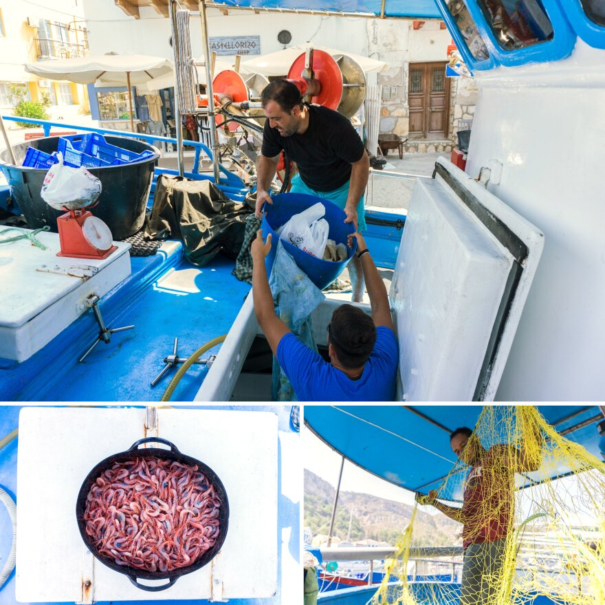 Top: Fisherman Dimitris Achladiotis and his son work on their boat after docking at the port of Kastellorizo. Left: Shrimp caught in the sea between Kastellorizo and Turkey. Right: Sayid Emasha, an Egyptian fisherman who has worked with Achladiotis for six years.