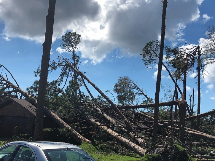 Trees are broken and crumbled onto a house in a Panama City neighborhood after Hurricane Michael.