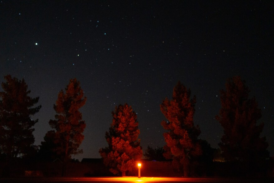 A low, amber-colored street light illuminates a handful of trees beneath a starry sky.