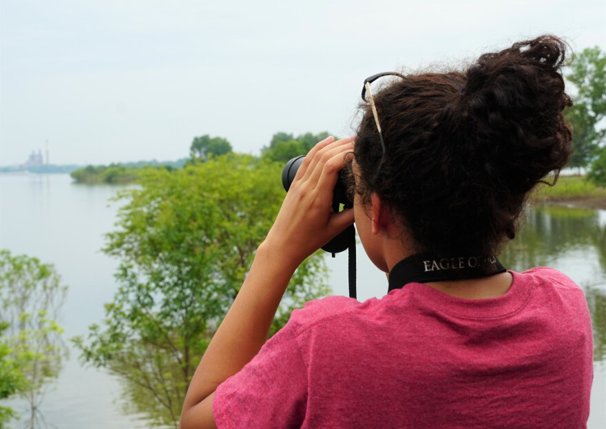 """Alayna Abel, junior at McCluer North, scans the Alton Slough for waterfowl on July 1, 2019. The 16-year-old said she got involved in the program because she wanted to expose more kids to the """"mystery of science."""""""
