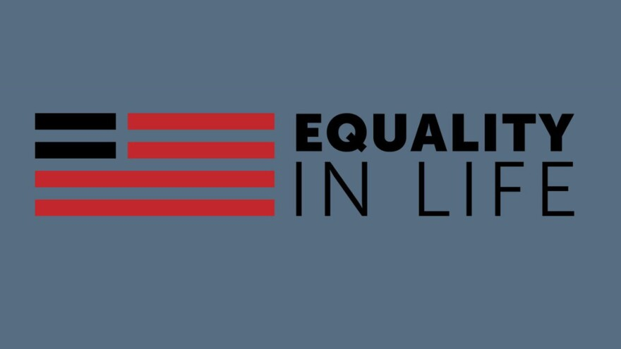 "An illustration of the American Flag is beside the words, ""Equality in Life."""
