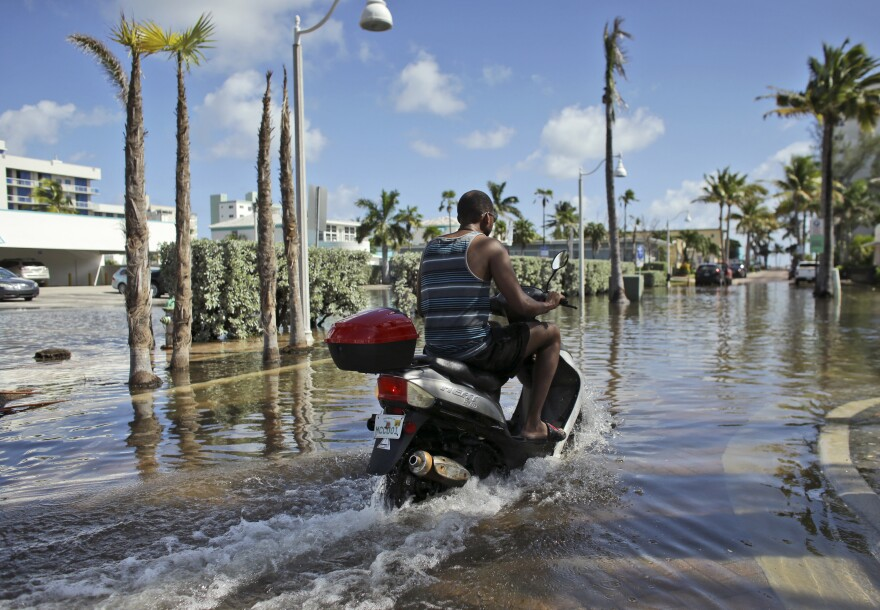 A motorbike navigates through floodwater caused by a seasonal king tide, Monday, Oct. 17, 2016, in Hollywood, Fla. King tides bring in unusually high water levels and can cause local tidal flooding.