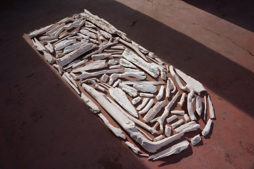"An art installation in Granite City called ""Tidewrack, consisting of casts of driftwood artist Meghan Grubb collected for three months along the Mississippi River."