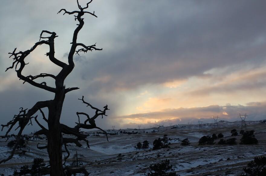 2010_EH_barrenwesternlandscape.JPG