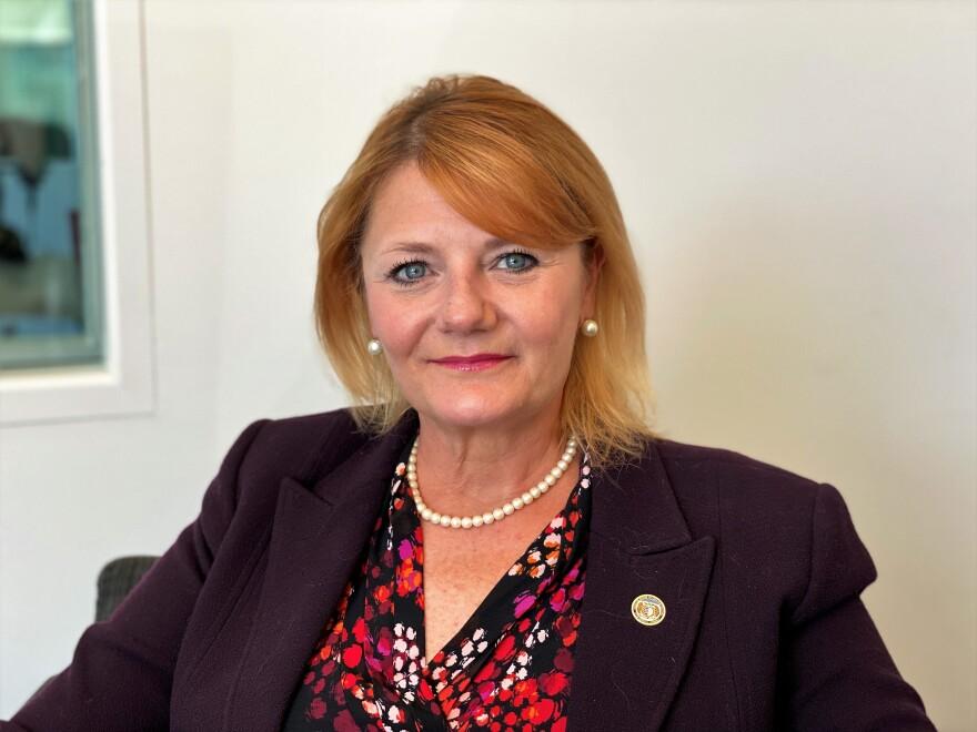 State Rep. LaDonna Appelbaum, D, St. Louis County