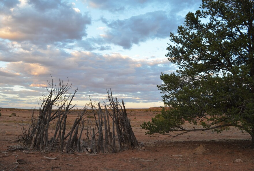 Photo of shade hut.