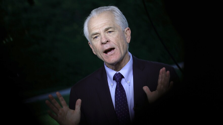 Peter Navarro, White House director of trade and manufacturing policy, has admitted quoting a fictional character in several of his nonfiction books.