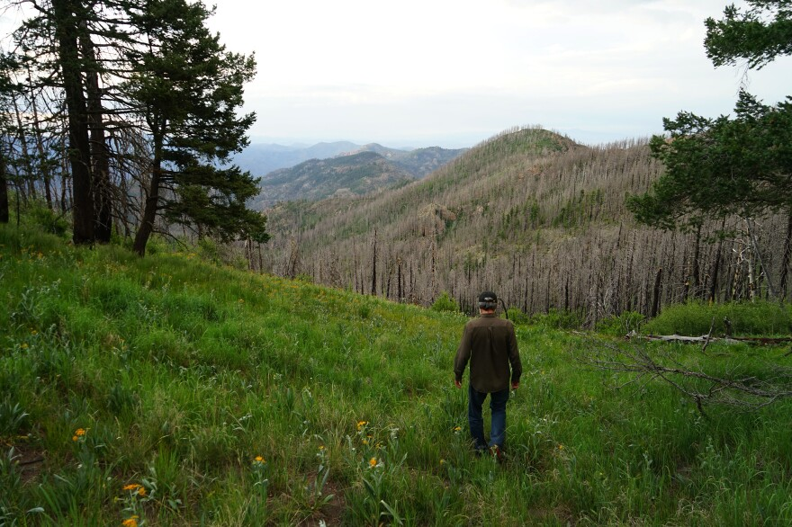 The Gila National Forest, where Connors works, is an outlier in a lot of ways. Ten lookouts are still regularly staffed each summer. Many are veterans like Connors.