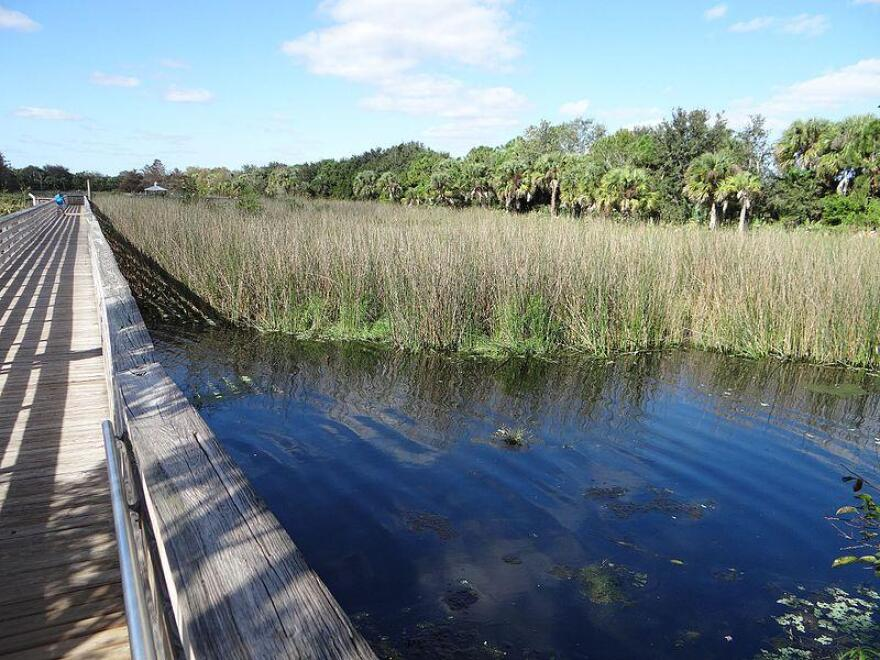 _green_cay_wetlands_and_nature_center__south_florida__palm_beach_county_pic.bb904_0.jpg
