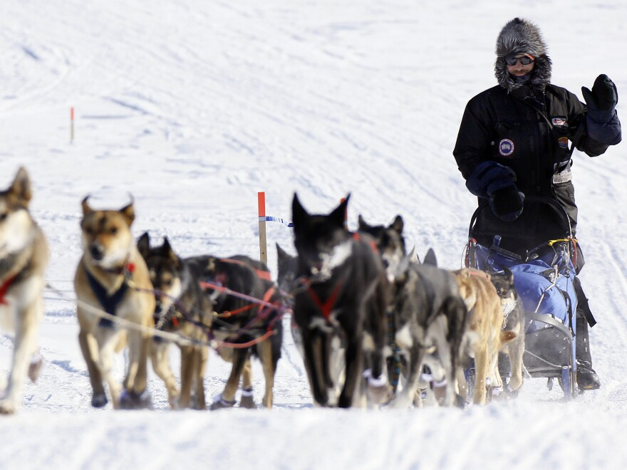 Mackey, shown racing in the 2009 Iditarod, has won four Yukon Quest races and a record-breaking four consecutive Iditarods. In 2007 and 2008, he won the Yukon Quest and Iditarod back-to-back.