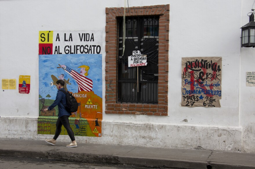 A pedestrian walks past anti-glyphosate art in Popayán, Colombia. Glyphosate has been deployed in Colombia to wipe out coca and poppy crops.