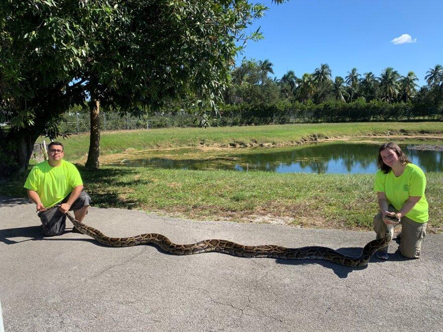 python100719.jpg