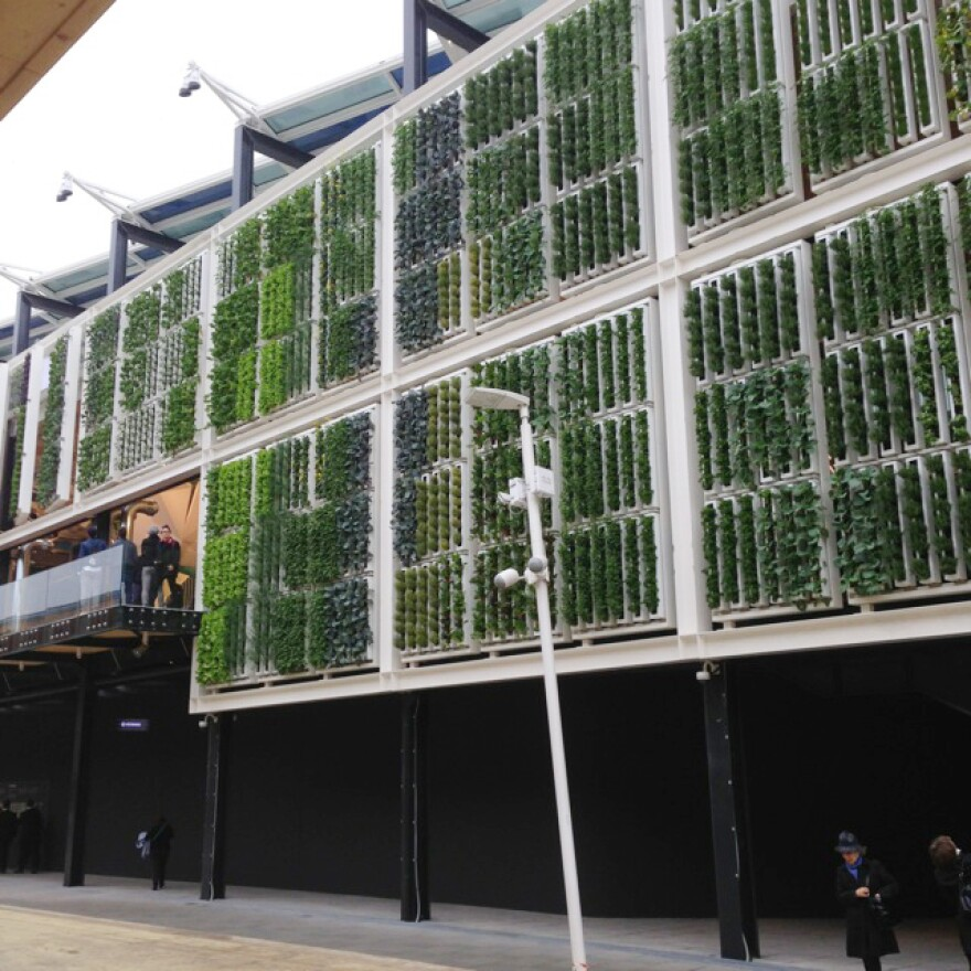 This vertical farm is part of the American pavilion.
