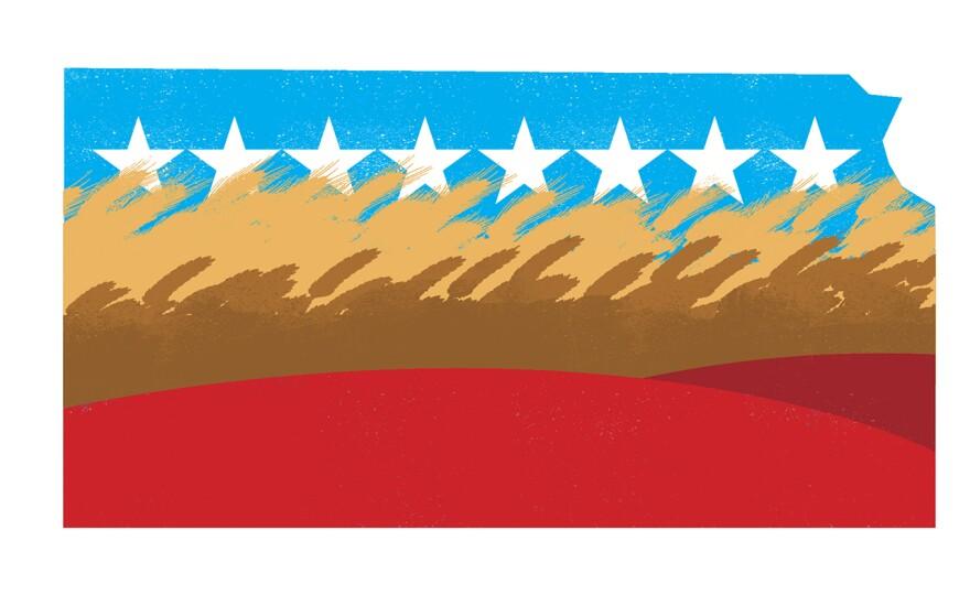kansas_election_crop.jpg