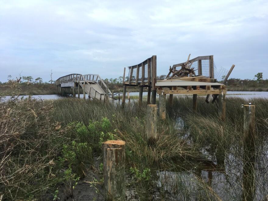 Hurricane Sally Damage 01 Fresh Take Florida 100820.JPG