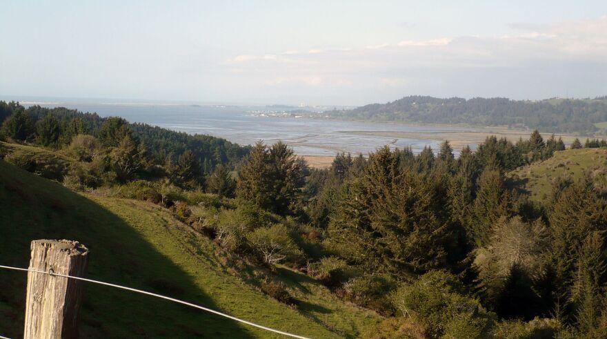 Humboldt_Bay_View_North.JPG
