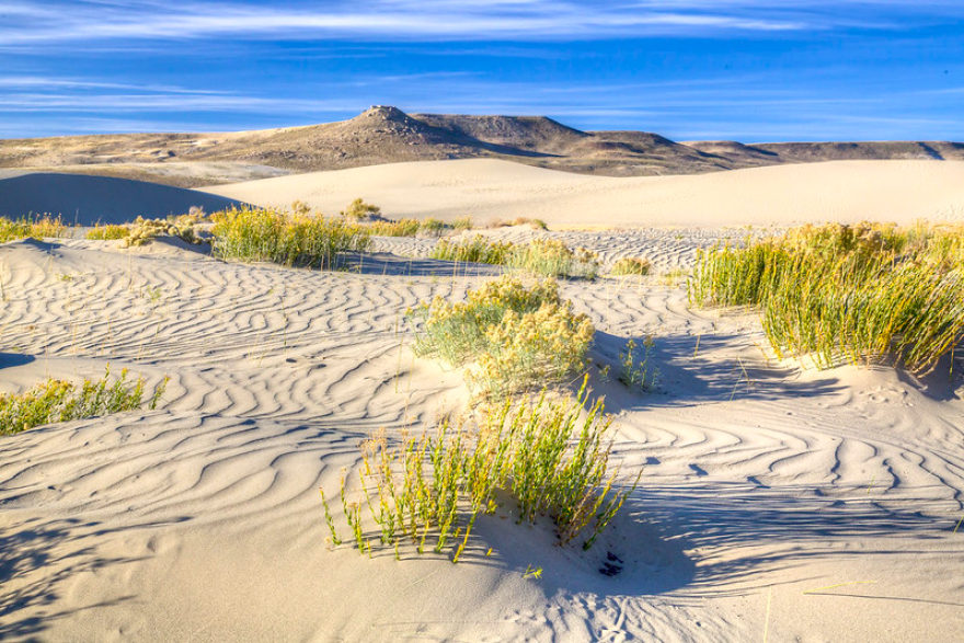 The Red Desert's Sand Dunes Wilderness Study Area in southwestern Wyoming.