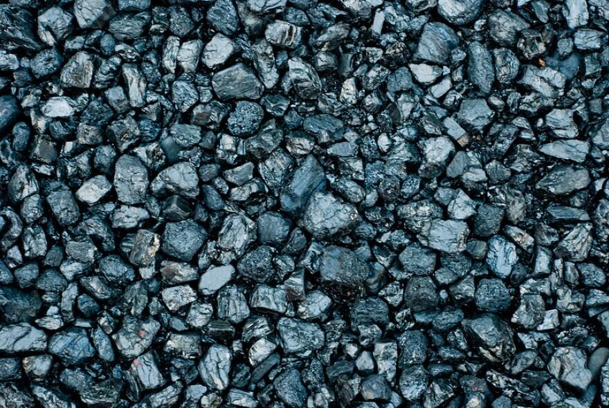 Blakc coal