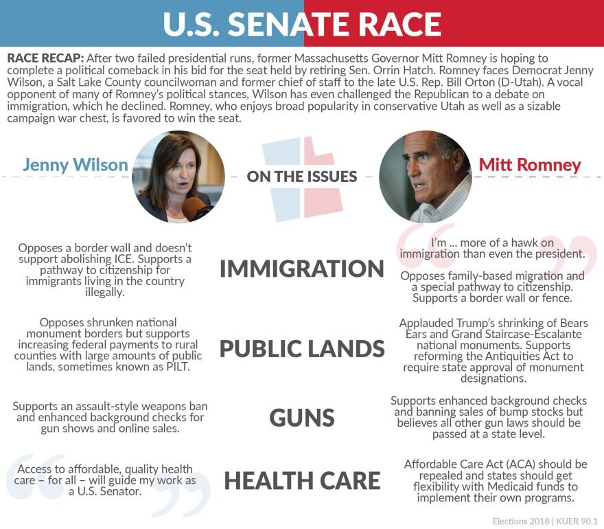 2018 midterm election senate race voter information card