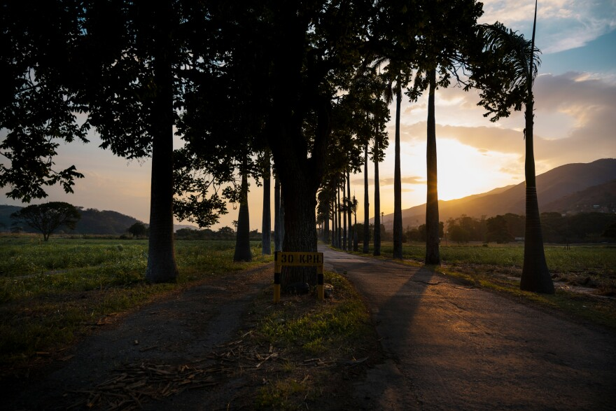 The sun sets on a road at  Hacienda Santa Teresa. According to Bernardo López, manager of the Santa Teresa Foundation, three gang members broke into the hacienda in 2003, in the hope of stealing the security guards' weapons. Instead of punishment, they were offered a chance to atone for their crime by working unpaid at the distillery for a few months.